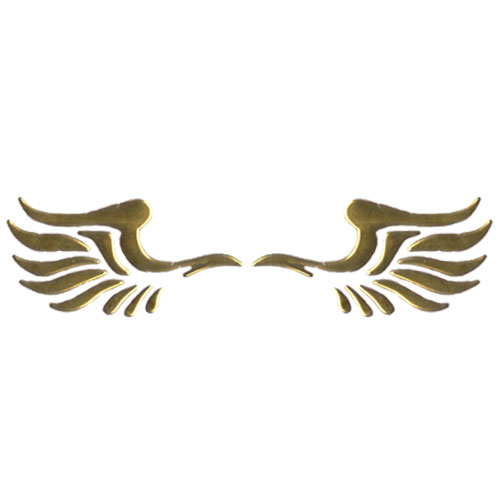 3D Phoenix's Wings