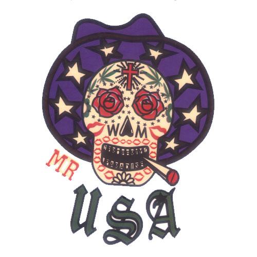 Mr USA